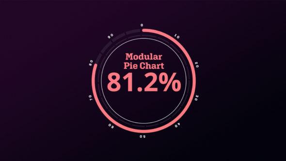 Infographic Modular Pie Chart